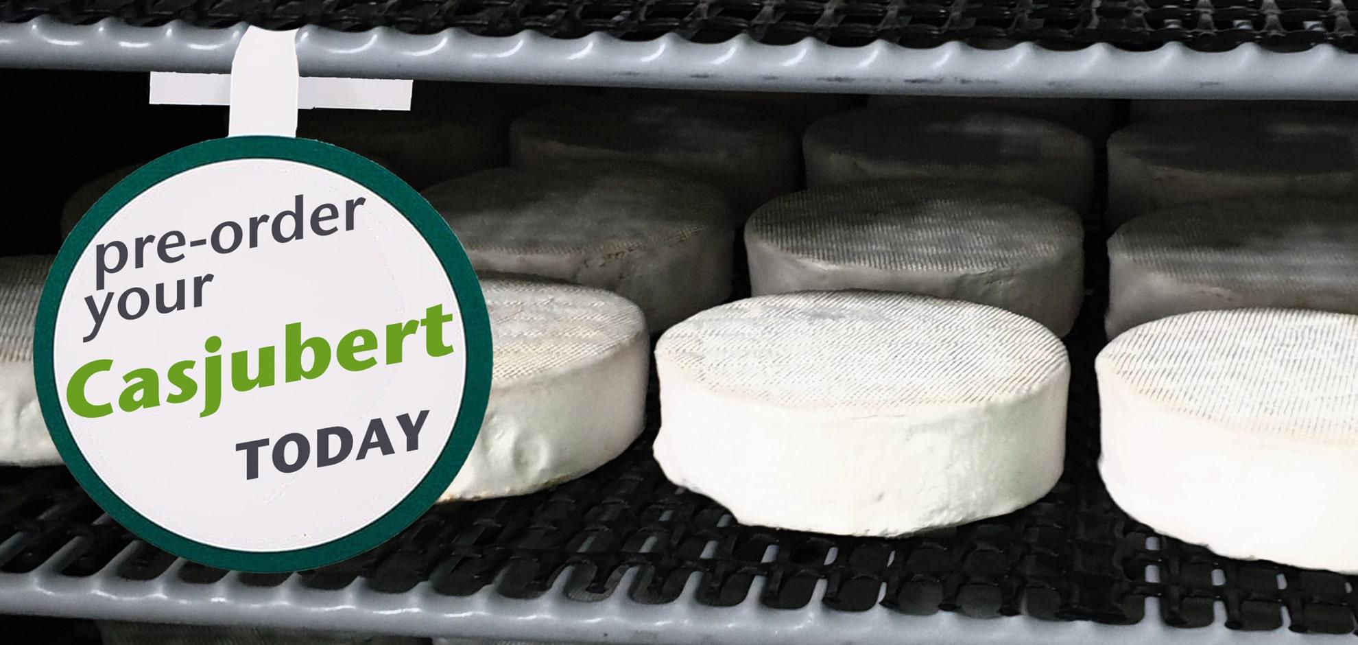 How to make a good vegan cheese?