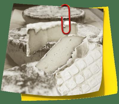 casjubert cheese platter note