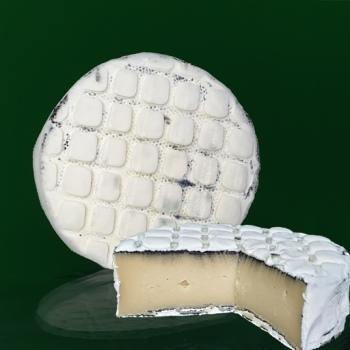 artisan plant-based vegan Brie style cheese Casjubert-2 Ashed