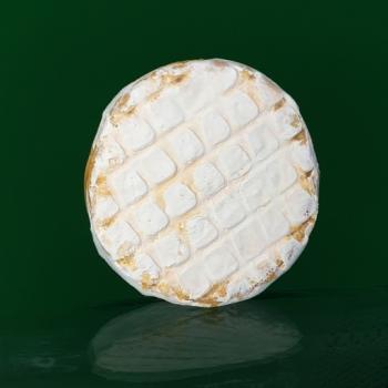 artisan plant-based vegan Brie style cheese Casjubert-3 SpiZe