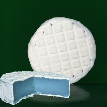 artisan plant-based vegan Brie style cheese Casjubert-2 Lagoon