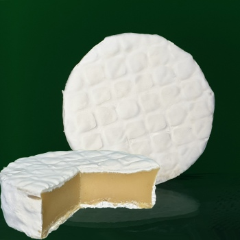 artisan plant-based vegan Brie style cheese Casjubert-2 NaTure